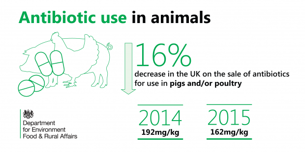 Graph showing there has been a 16% decrease in the UK on the sale of antibiotics for use in pigs and/or poultry