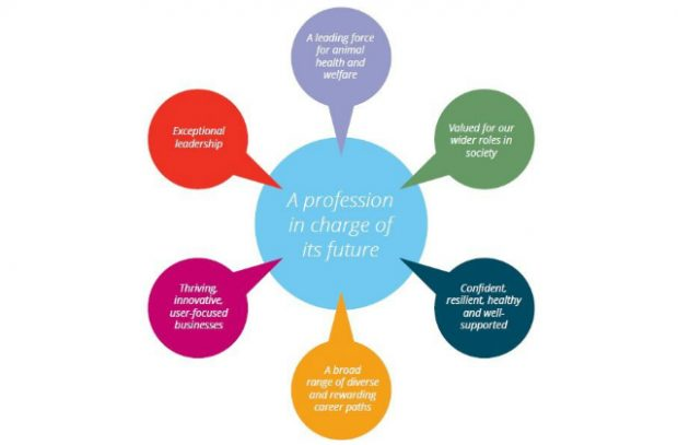 Infographic of the changes to profession with 6 sections: Exceptional Leadership, A leading force for animal health and welfare, valued for our wider roles in society, confident, resilient and well-supported, a broad range of diverse and rewarding career paths, thriving, innovative, user-focused business.