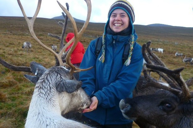 A reindeer eating out of Deborah's hands with another looking at the camera.