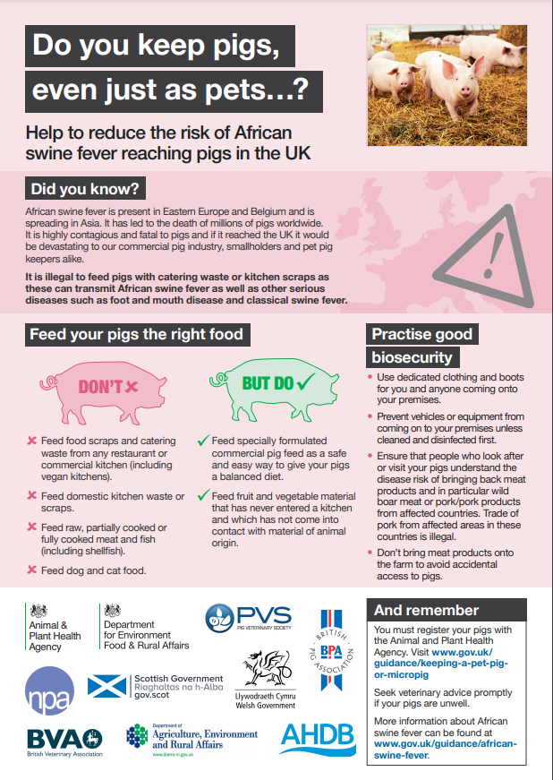 African swine fever poster describing how to reduce the risk of ASF reaching the UK